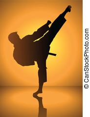 Karate - Silhouette of a karateka doing standing side kick