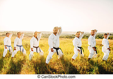 karate, stand, oplossen, de, stander, opleiding, in, akker