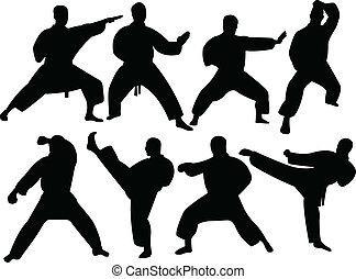 karate, sylwetka