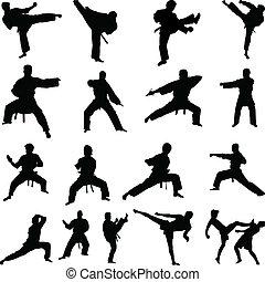 karate, sylwetka, pozy, różny