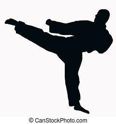 karate, sylwetka, sport, -, kopnąć