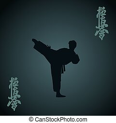 Karate - The man engaged in the karate