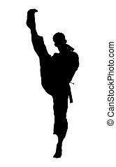 karate, trayectoria, recorte, silueta, patada