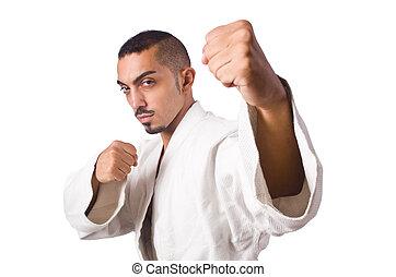 karate, vadászrepülőgép, elszigetelt, képben látható, a, fehér
