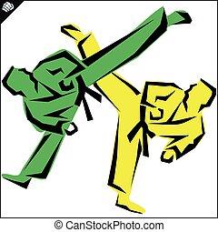karate, vadászrepülőgép, magas, megrúg, színhely