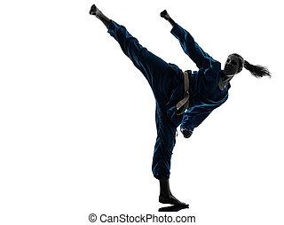 karate, vietvodao, harcművészetek, nő, árnykép