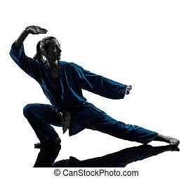 karate, vietvodao, jiu jitsu, frau, silhouette