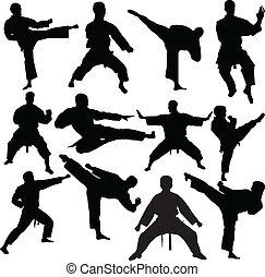 karate, wektor, -, zbiór