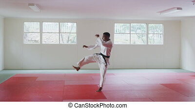 karateka, air, donner coup pied