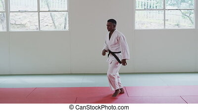 Karateka posing on the mat - Side view of a teenage mixed-...