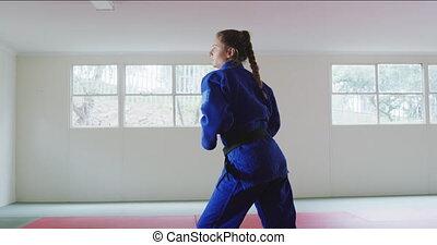 karateka, powietrze, kopanie