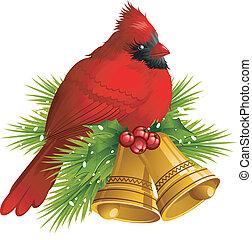 kardinal, vogel, mit, weihnachtsglocken