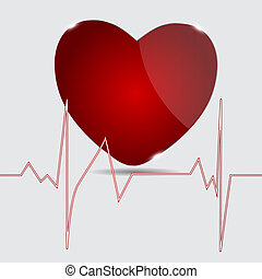 kardiogram, vektor, heart., illustration.