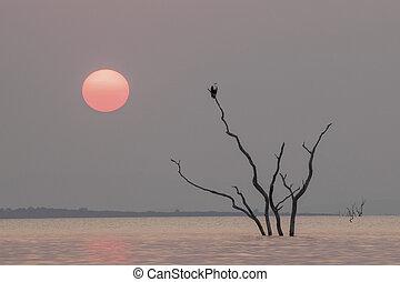 kariba, 호수