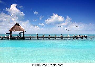 karibisch, tropischer strand, kabine, pier, contoy insel