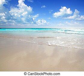 karibisk, morgon, lätt, strand, våt sand, reflexion