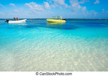 karibisk, tropical strand, turkos, vatten