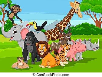 karikatúra, állatok, vad, dzsungel