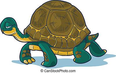 karikatúra, teknősbéka, gyalogló