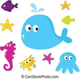 karikatúra, tenger, halfajták, és, állatok, ikonok, elszigetelt, white, backgroun