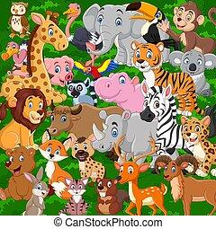 karikatúra, vad, gyűjtés, állatok, állhatatos