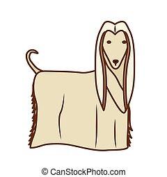 karikatur, hunde ikone