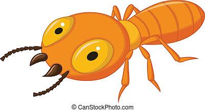 karikatur, termite