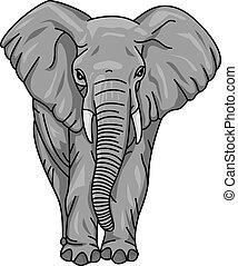 karikatura, slon