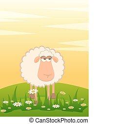 karikatura, usmívaní, sheep