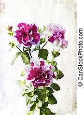 karmozijnrood, watercolored, petunia