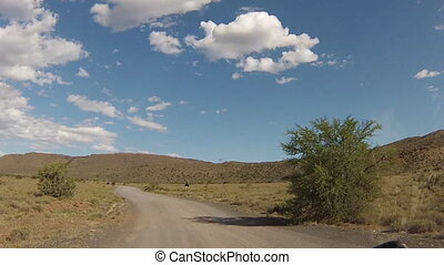First person view inside a car on the dirt roads of Karoo National Park with ostriches crossing, in Western Cape province of South Africa.