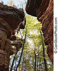 Karst rocks on Dahner Felsenpfad at Rheinland-Pfalz - Karst...