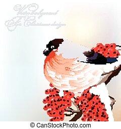 karta, ptak, powitanie, o, boże narodzenie