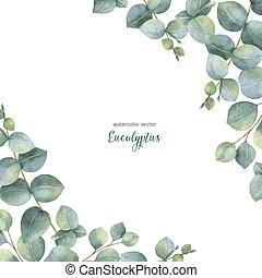 karte, eukalyptus, zweige, hintergrund., vektor, dollar, aquarell, blumen-, blätter, freigestellt, weißes, silber, grün