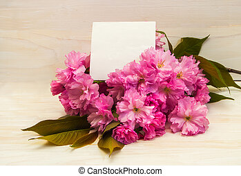 kartka pocztowa, flowers., sakura