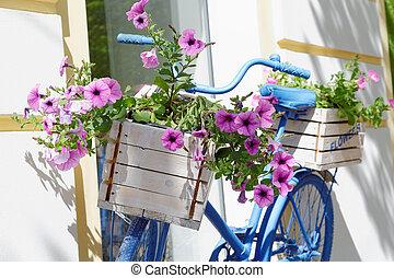 kasten, sommer, altes , blumen, fahrrad