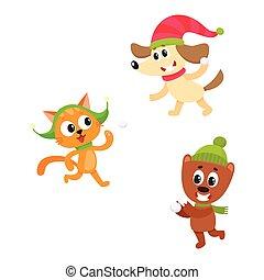 kat, dog, beer, sneeuwballen, karakters, spelend
