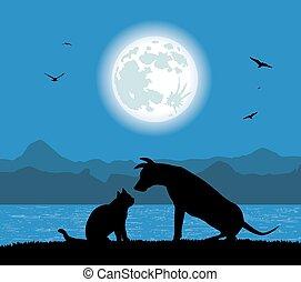 kat, dog, silhouette
