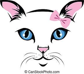 kat, gezicht