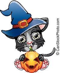kat, heks, vasthouden, hoedje, spotprent, pompoen