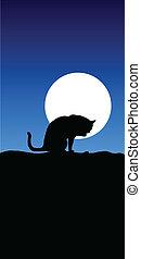 kat, illustratie, maan