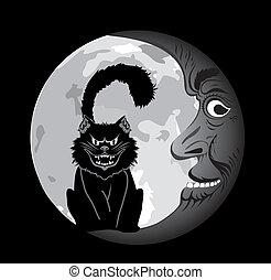 kat, maan, black , onder