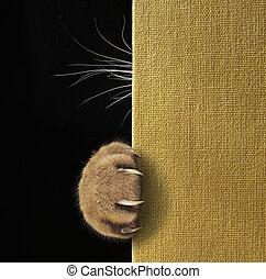 kat, pote, og, bakkenbarter, på, en, bog