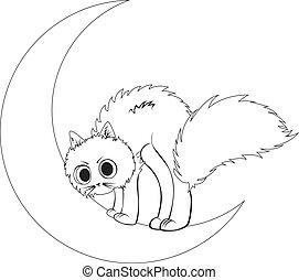 kat, zit, maan