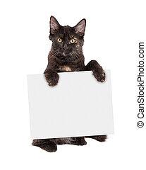 katje, meldingsbord, black , vasthouden, leeg