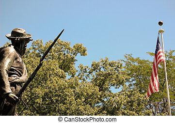 katona, amerikai, confederate lobogó, nézet