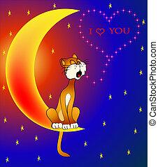 katt, dag, kärlek, valentina, måne, om, sittande, sjung