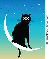 katt, hos, månen