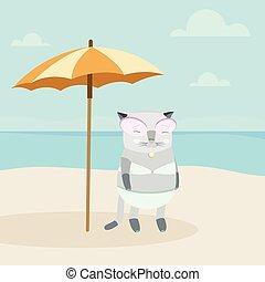 katt, stranden