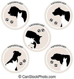 katt, veterinär, hund, ikonen